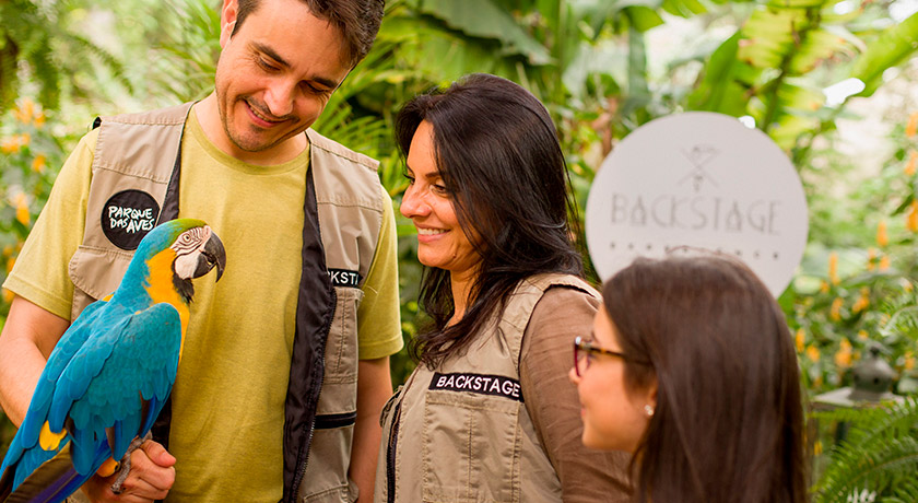 Backstage Experience - Parque das aves